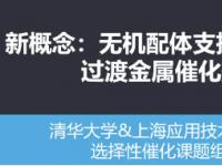 上海应用技术大学余焓教授 无机配体支撑/配位的金属催化剂